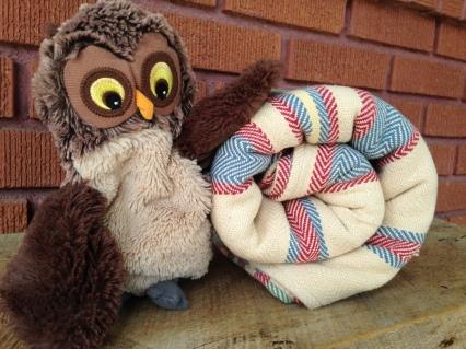 owl towl