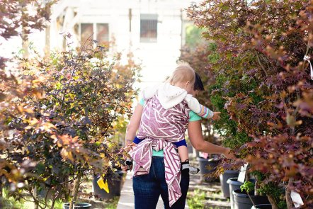 View More: http://sarafiajonesphotography.pass.us/valleynursery